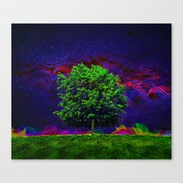Warped Nature Canvas Print