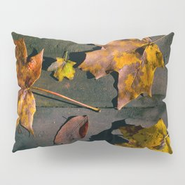 Fall Season in its many Shades. Pillow Sham