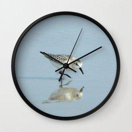 Sanderling Wall Clock