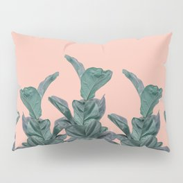 Rubber trees in group with beige pink Pillow Sham