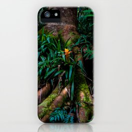 Kona Cloud Forest Sanctuary iPhone Case