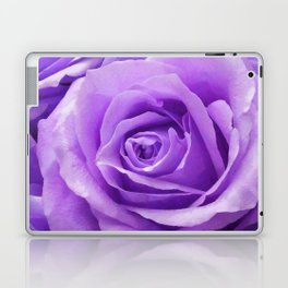 Violet roses Laptop & iPad Skin