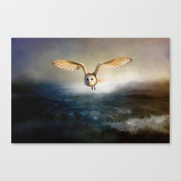 An owl flies over the lake Canvas Print