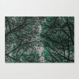 TREE 2 Canvas Print