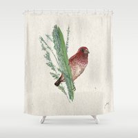 spice Shower Curtains featuring Spice Finch by Jennifer Thy