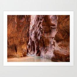The Narrows Zion National Park Utah Art Print