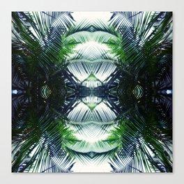 fern garden Canvas Print