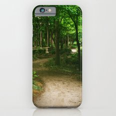 Down A Path iPhone 6s Slim Case