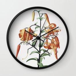Vintage Tiger Lily Illustration Wall Clock