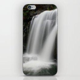 Moose Falls iPhone Skin