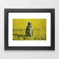 Stranded in the sunflower field Framed Art Print