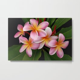 Wailua Sweet Love Metal Print