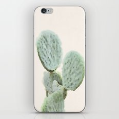 Spring Cactus iPhone & iPod Skin