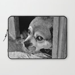 I'm Just a Dog, Don't Hurt Me!  Laptop Sleeve