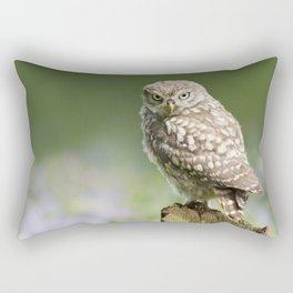 Little owl in meadow Rectangular Pillow
