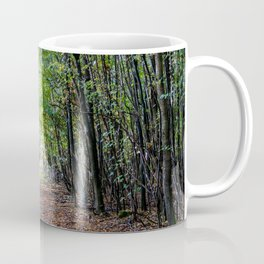 Pathway in the autumn forest Coffee Mug