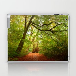 Path in the forest Nature Laptop & iPad Skin