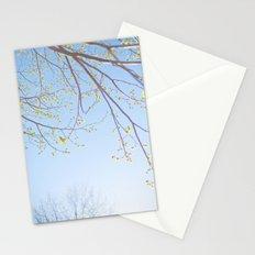 Spring Light. Stationery Cards