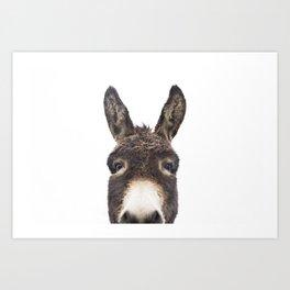 Hey Donkey Art Print