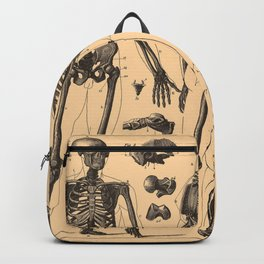 Vintage Human Skeleton Anatomy Diagram (1907) Backpack