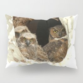 Family Portrait Pillow Sham