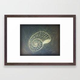 The Sea Shell Framed Art Print