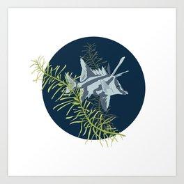 Seaweed Graphics Boarfish Art Print