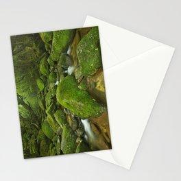 River along Shiratani Unsuikyo rainforest trail on Yakushima Island, Japan Stationery Cards