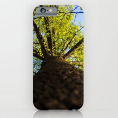 Upward to the canopy Slim Case iPhone 6s