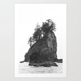 Rocks at Second Beach in Olympic National Park, Washington, USA Art Print