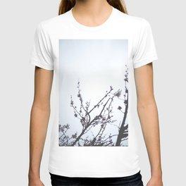 Hello Spring III. T-shirt