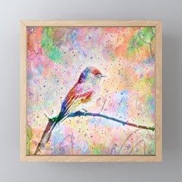 Flashy Phoebe - Black Phoebe Bird Framed Mini Art Print