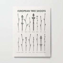 European Tree Shoots Metal Print