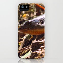 I see you too iPhone Case