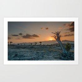 Al-Dschabal al-Achdar at sunset, small tree Art Print