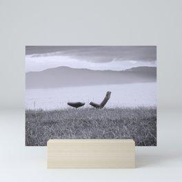 Iceland Lake Break Mini Art Print