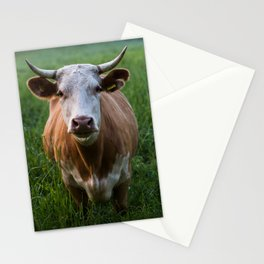 COW - FIELD - GREEN - VALLEY - NATURE - PHOTOGRAPHY - LANDSCAPE Stationery Cards