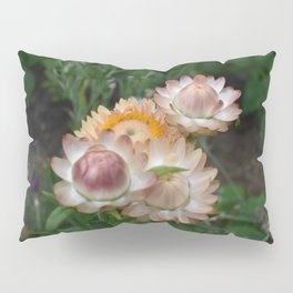 Lite Pillow Sham