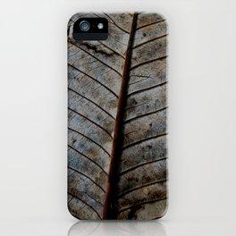 Hoja 3 iPhone Case