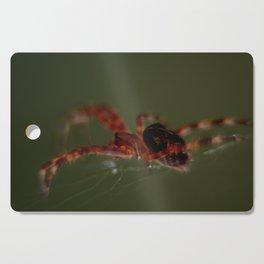 Spider on Web Cutting Board