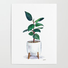 Rubber Plant Painting Poster