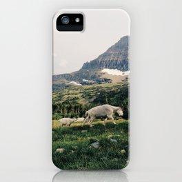 Montana Mountain Goat Family iPhone Case
