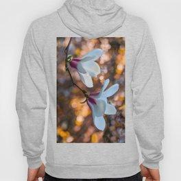 Blooming Magnolia Hoody