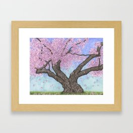 Cherry Blossom Tree Ink and Watercolor  Framed Art Print