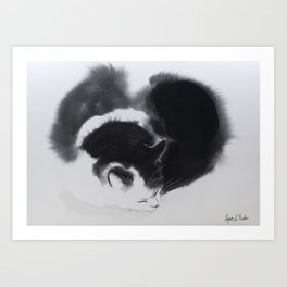 Sleeping cat Art Print