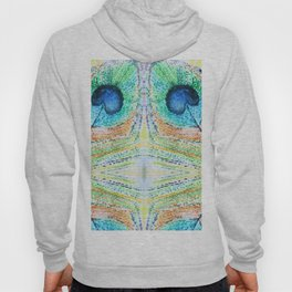 Peacok Feather Abstract Hoody
