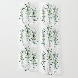 Eucalyptus Branches Wallpaper