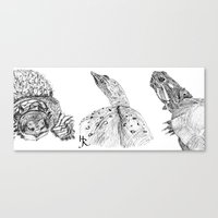 turtles Canvas Prints featuring Turtles by Heather Rupe Jones