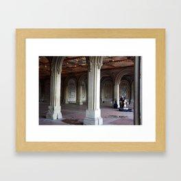 Central Park Soloist  Framed Art Print