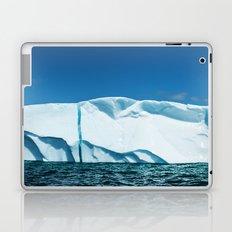 Labrador Iceberg Laptop & iPad Skin